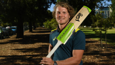 Prime example: Will Pucovski has been called up to the Test squad despite more than 40 per cent of his first class runs coming from a single innings.