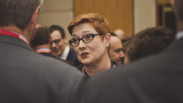 "Foreign Minister Marise Payne: ""We firmly support individual human rights."""