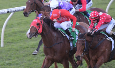 Not quite: Robbie Dolan, right, looks across to the winner, Smartedge, after just missing with Notation.