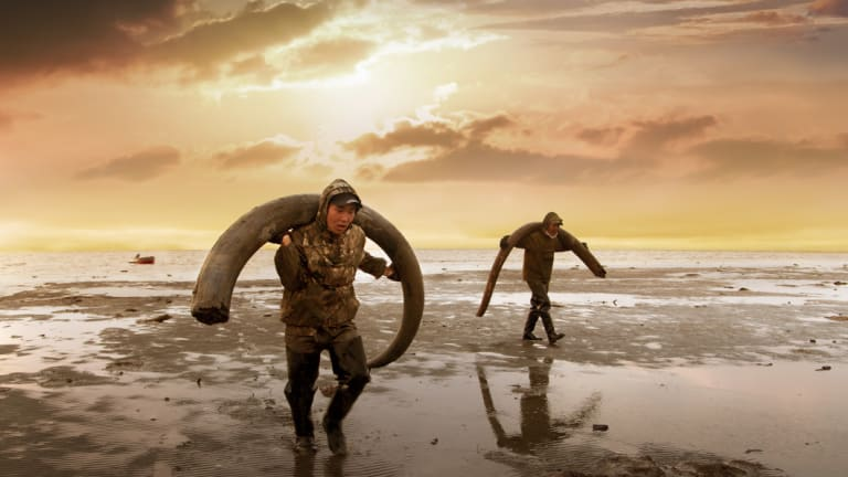 <i>Genesis 2.0</i> , about a project to bring mammoths back to life, is in Stronger Than Fiction 2018.