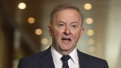 'Extraordinary action': Labor says government must justify India ban