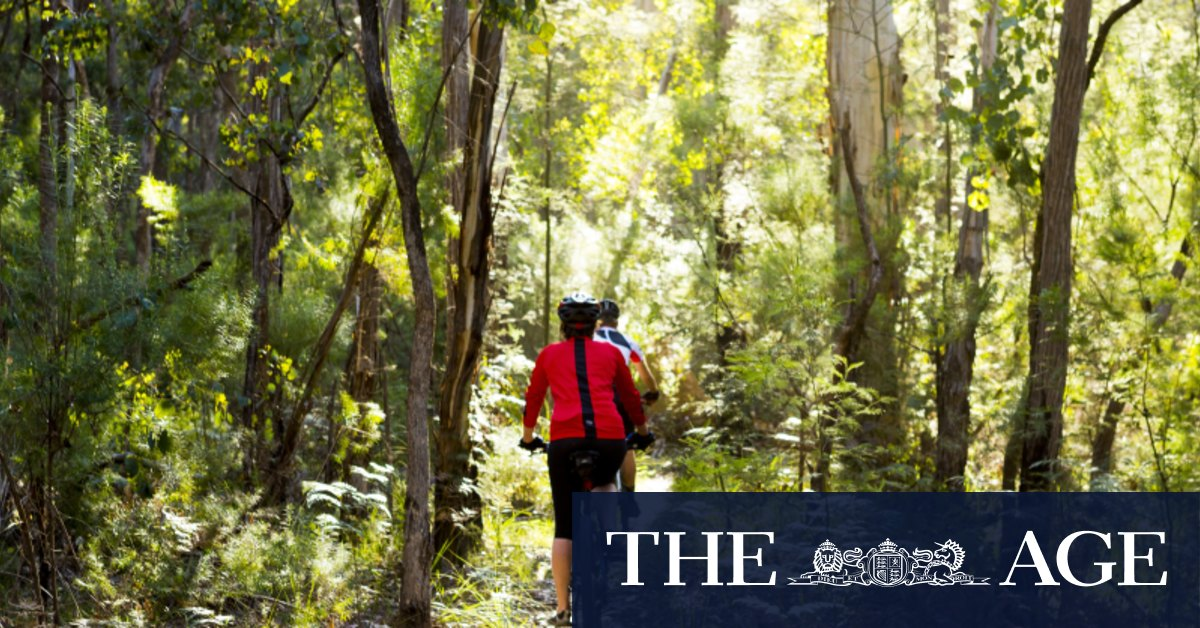 Victoria unveils $200 vouchers to encourage visitors to the regions – The Age
