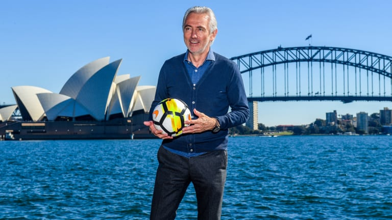Bridging the gap: Bert van Marwijk will take the Socceroos to the World Cup before Graham Arnold takes over afterward.