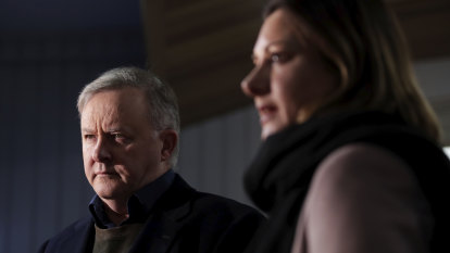 Albanese says he has best candidate as Eden-Monaro goes down to the wire