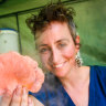 The backyard mushroom growers supplying Melbourne restaurants