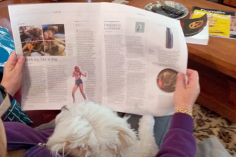 """Daisy loving self-isolation with her humans, and showing interest in the story """"Working like a dog"""" [April 4]."""
