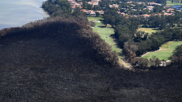 Golfers are seen on the green next to a bushfire-damaged area in Peregian Springs.