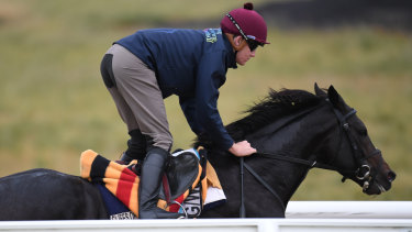 The Cliffsofmoher with strapper Emmet McNamara.