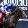 Luke Currie rides Lyre to victory at Caulfield.