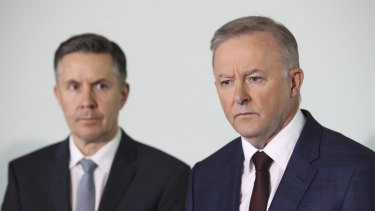 Shadow Minister for Health and Ageing Mark Butler and Opposition Leader Anthony Albanese.