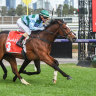 Cup-winning trainer unearths Derby contender at Flemington