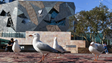 "Planning Minister Richard Wynne says Federation Square is ""pretty sad"" if you visit outside the weekend."