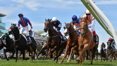 Vow And Declare won the Cup and a WA punter picked up almost $800,000.