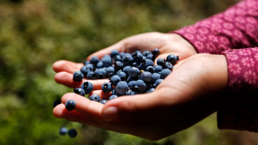 Keep calm and eat blueberries.