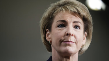 "Small business minister Michaelia Cash said the government was working ""methodically"" to deliver reform to the franchising sector while avoiding unnecessary red tape."