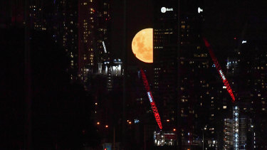 The supermoon peeks out from Melbourne buildings.