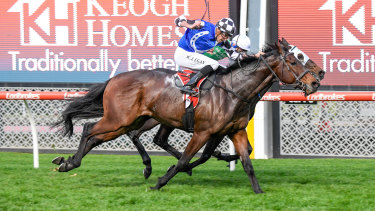 Jockey Billy Egan rides Plein Ciel to a tight victory last weekend - breaking the whip rules in the process.