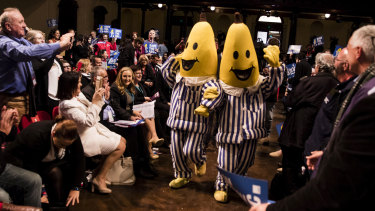 NSW Labor's state conference in June featured an appearance by (unofficial) Bananas in Pyjamas.