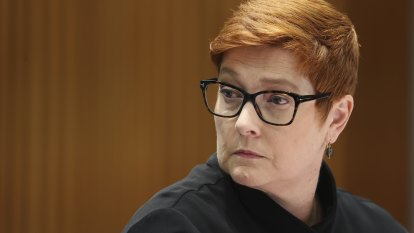 Morrison government dumps plan for domestic violence victims to access super