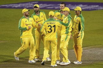 Australia's Josh Hazlewood, third right, celebrates with teammates the dismissal of England's Moeen Ali during the first ODI cricket match between England and Australia, at Old Trafford in Manchester, England.