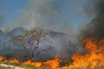 A bushfire burns near Brasilia, Brazil. A state of emergency was declared for the federal district due to the number of fires in it and in surrounding states.
