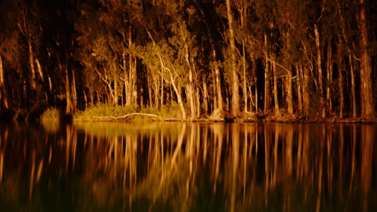 Changes to the Murray-Darling Basin will be put to a vote in the Senate.
