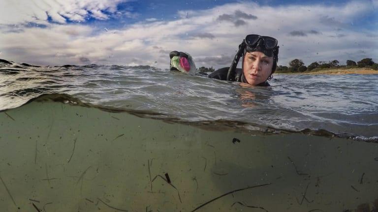 Josie Jones in the water at Rye beach.