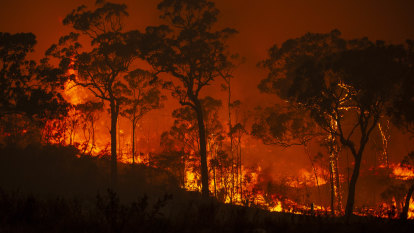 'Dire outlook': Researchers call for urgent Australian climate action