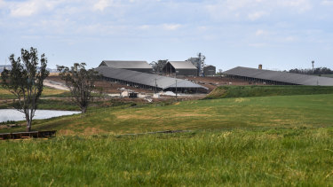 The Perich family's large farm is next to the site of the new airport in western Sydney.