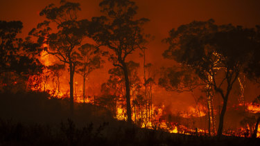 A fire burns through Mangrove Mountain in NSW in December.