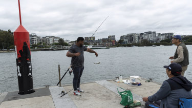 A barra in the Parra provides hope that water quality is on the improve in Sydney Harbour.