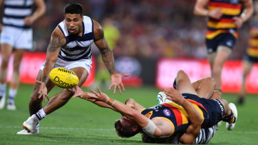 On the lowdown: Geelong's Tim Kelly grabs a chance to take possession.