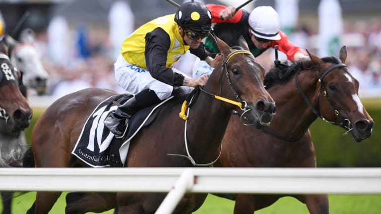 Won group 1 on soft: In Her Time.