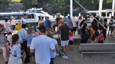 Demand for ferry services on the Parramatta River soars over the summer months.