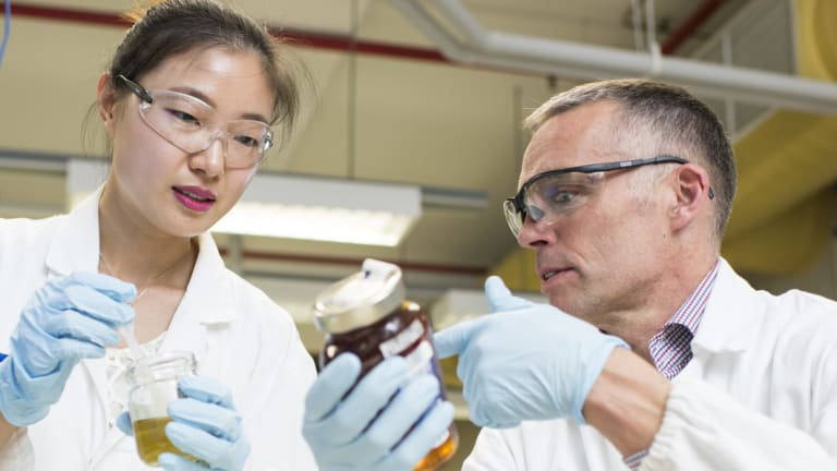 Professor Mark Taylor (right) and student Xiaoteng Zhou at Macquarie University have completed a survey of 100 samples of honey that shows Australia has adulterated honey.