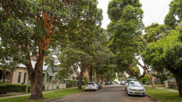Carrington Street sits about 40 metres above the WestConnex tunnels.