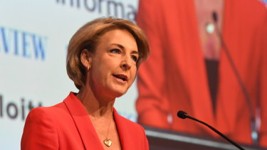 Employment Minister Michaelia Cash is under pressure over the AWU raid leaks.