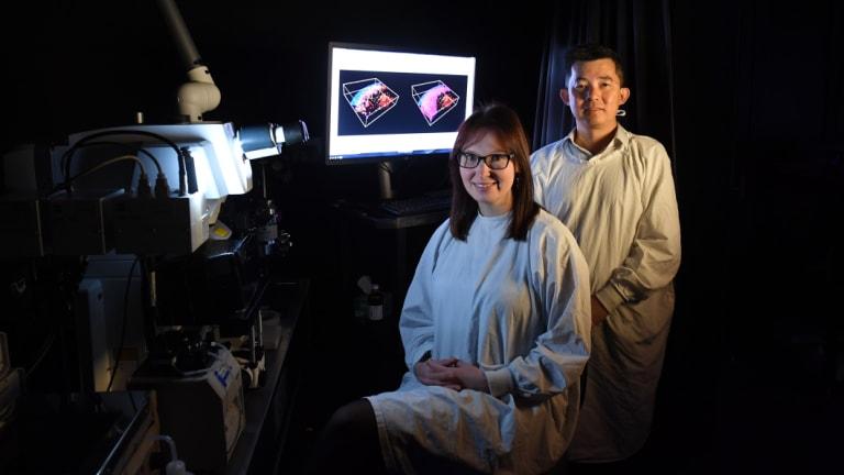 Associate Professor Tri Phan and Dr Imogen Moran.