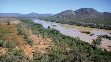 Planting projects along the Burdekin River have reduced the amount of silt being dumped on to the Great Barrier Reef.