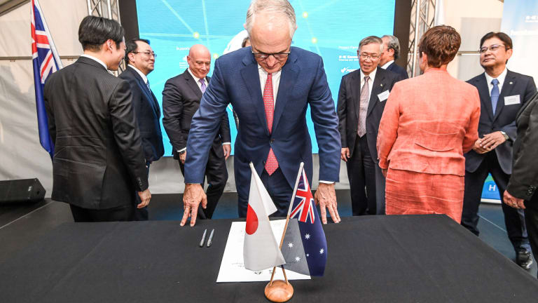Malcolm Turnbull  says brown coal might one day keep the lights on in Japan.