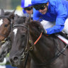 Kerrin McEvoy takes the Ranvet Stakes on Avilius at Rosehill in the autumn.