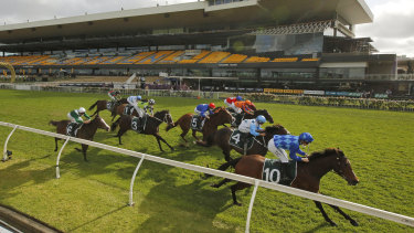 Vangelic holds off the challengers in the Golden Pendant at Rosehill on Saturday.