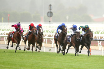 Unrelenting: Alligator Blood and Catalyst were neck-and-neck at Flemington.