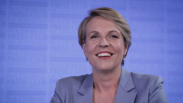 Deputy opposition leader and acting spokeswoman for Employment, Tanya Plibersek.