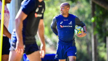 Gregan has been enlisted to work with Australia's halfbacks and five-eighths.