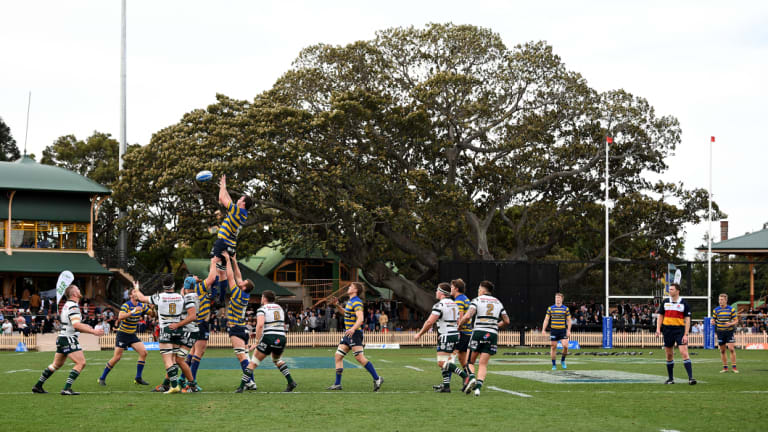 Queues at the bar were a small price to pay for the picturesque setting of North Sydney Oval.