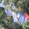 Paraglider gets stuck 35 metres up tree after crash landing