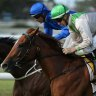 Danger: Onthetake, seen here winning at Newcastle, is a good chance in race 3.