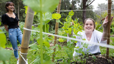 Lorien Novalis Steiner school splits its day into three sections, with all academic content covered in the morning, cultural and arts lessons in the afternoon and hands-on sessions such as gardening at the end of the day.
