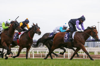 Rapid Racing will return to Flemington this summer, but the silks will change after the club received feedback on the difficulty in differentiating runners.